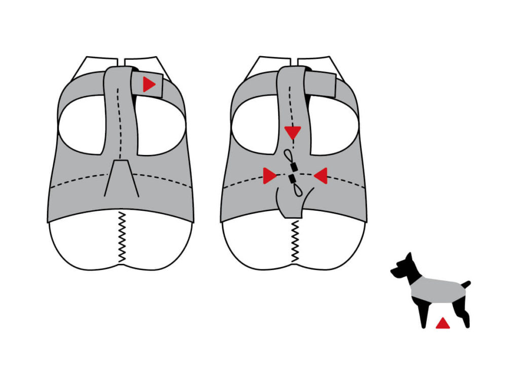 DogBite_Grafik_Einstellmöglichkeiten_V1
