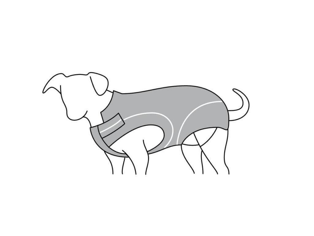 DogBite_Grafik_Reflexionsstreifen